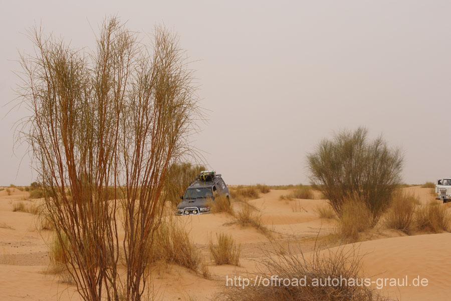 Patrol Tunesien - Bild 37